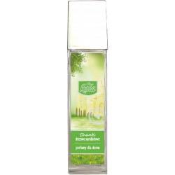 KALA CHANTI Olejek zapachowy drzewo sandałowe 100